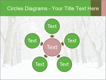 Winter Park PowerPoint Templates - Slide 78