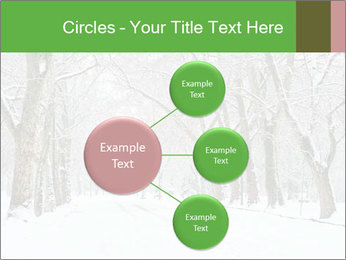 Winter Park PowerPoint Templates - Slide 79