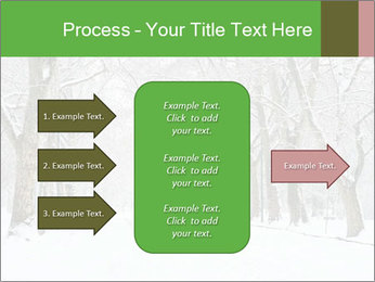 Winter Park PowerPoint Templates - Slide 85