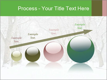 Winter Park PowerPoint Templates - Slide 87