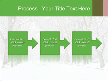 Winter Park PowerPoint Templates - Slide 88
