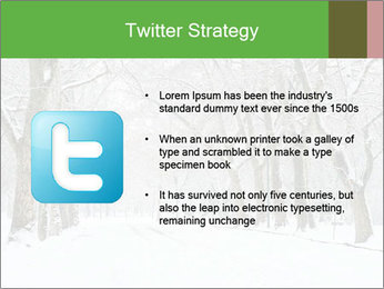 Winter Park PowerPoint Templates - Slide 9
