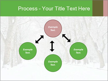 Winter Park PowerPoint Templates - Slide 91
