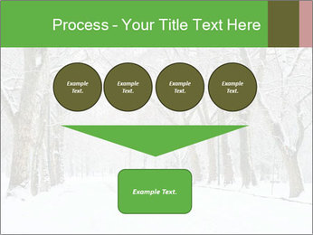 Winter Park PowerPoint Templates - Slide 93
