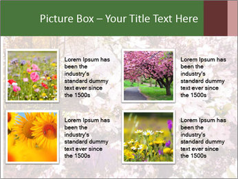 Pink Tree Blossoming PowerPoint Template - Slide 14
