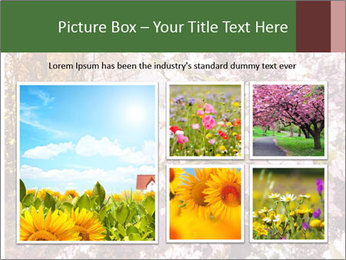 Pink Tree Blossoming PowerPoint Template - Slide 19