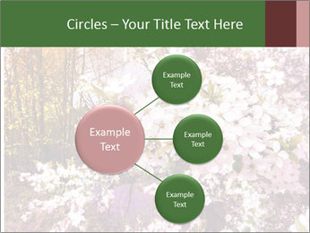 Pink Tree Blossoming PowerPoint Template - Slide 79