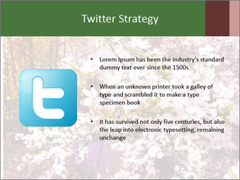 Pink Tree Blossoming PowerPoint Template - Slide 9
