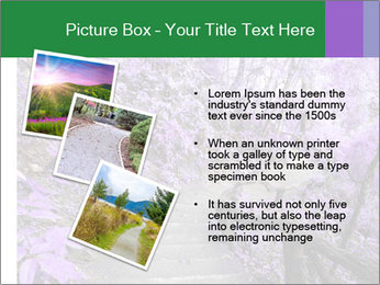 Fantasy Footpath PowerPoint Templates - Slide 17