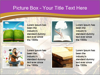 Mystic Book PowerPoint Templates - Slide 14