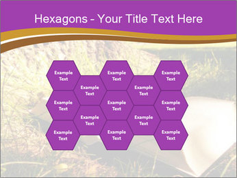 Mystic Book PowerPoint Template - Slide 44