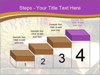 Mystic Book PowerPoint Template - Slide 64