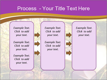 Mystic Book PowerPoint Templates - Slide 86