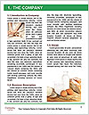 0000089462 Word Template - Page 3