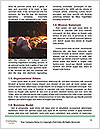 0000089462 Word Template - Page 4