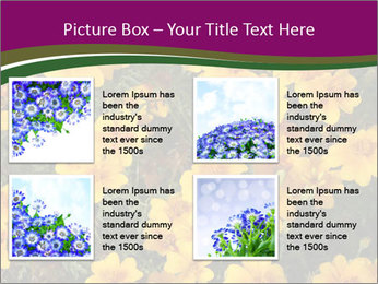 Marigold Flowers PowerPoint Templates - Slide 14