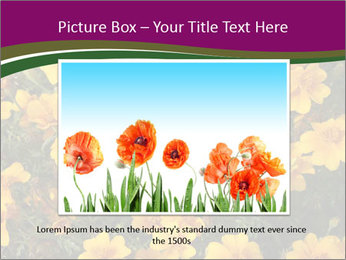 Marigold Flowers PowerPoint Templates - Slide 16
