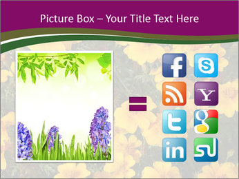 Marigold Flowers PowerPoint Templates - Slide 21