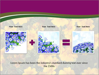 Marigold Flowers PowerPoint Templates - Slide 22
