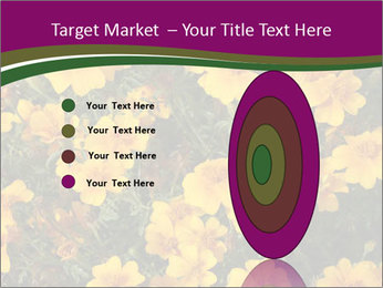 Marigold Flowers PowerPoint Templates - Slide 84