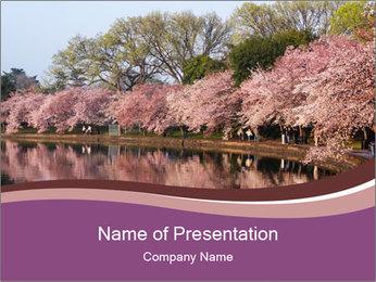 Trip To Washington PowerPoint Templates - Slide 1