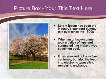 Trip To Washington PowerPoint Templates - Slide 13