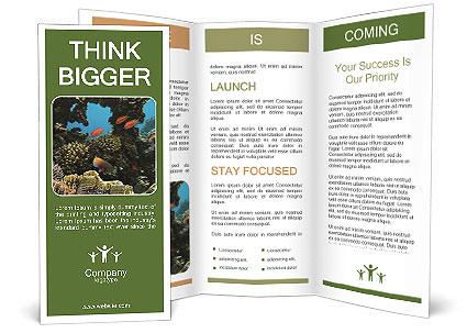 0000089469 Brochure Templates