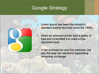 Underwater Life PowerPoint Templates - Slide 10