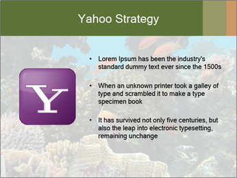 Underwater Life PowerPoint Templates - Slide 11