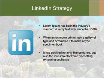 Underwater Life PowerPoint Templates - Slide 12