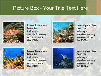 Underwater Life PowerPoint Templates - Slide 14