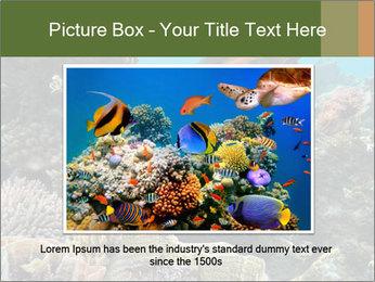 Underwater Life PowerPoint Templates - Slide 15