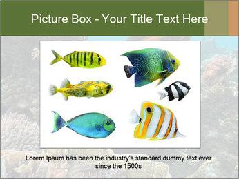 Underwater Life PowerPoint Templates - Slide 16