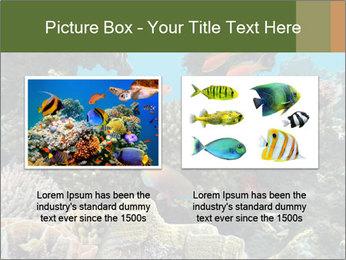 Underwater Life PowerPoint Templates - Slide 18