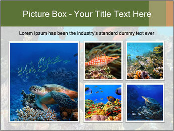 Underwater Life PowerPoint Templates - Slide 19