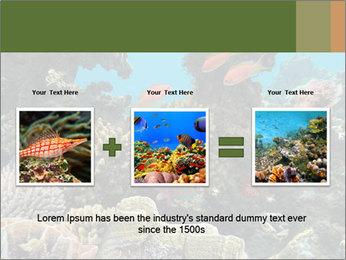 Underwater Life PowerPoint Templates - Slide 22
