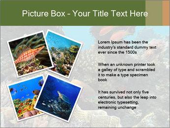Underwater Life PowerPoint Templates - Slide 23