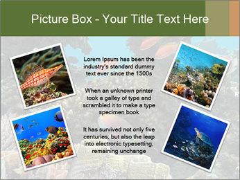 Underwater Life PowerPoint Templates - Slide 24