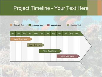 Underwater Life PowerPoint Templates - Slide 25