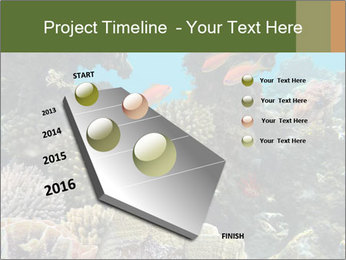 Underwater Life PowerPoint Templates - Slide 26