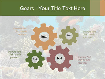 Underwater Life PowerPoint Templates - Slide 47