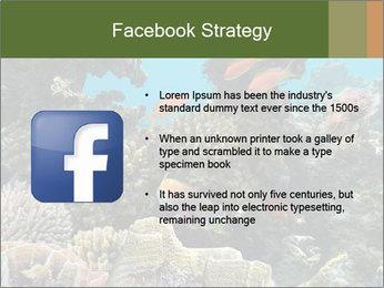 Underwater Life PowerPoint Templates - Slide 6