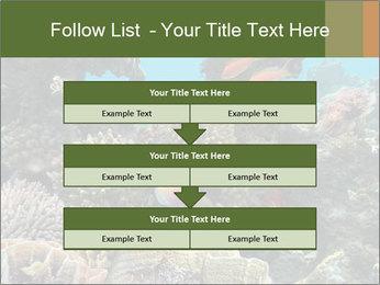 Underwater Life PowerPoint Templates - Slide 60