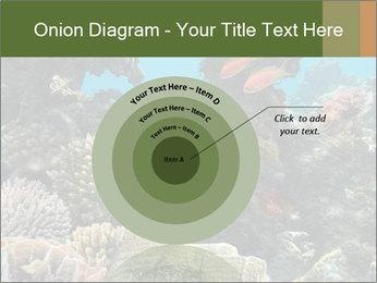 Underwater Life PowerPoint Templates - Slide 61