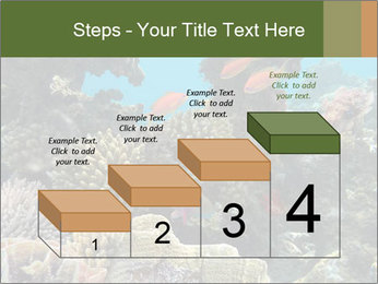 Underwater Life PowerPoint Templates - Slide 64