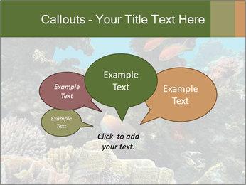 Underwater Life PowerPoint Templates - Slide 73