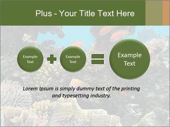 Underwater Life PowerPoint Templates - Slide 75