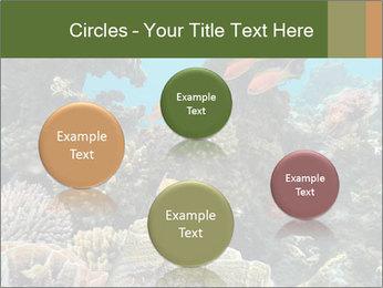 Underwater Life PowerPoint Templates - Slide 77