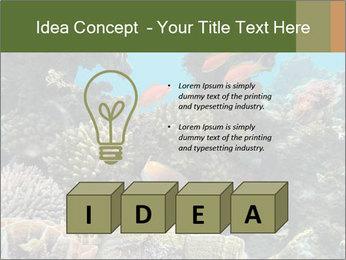 Underwater Life PowerPoint Templates - Slide 80