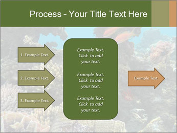 Underwater Life PowerPoint Templates - Slide 85